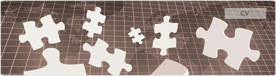 jz   cv php    cv developpeur web 2 0    programmeur php